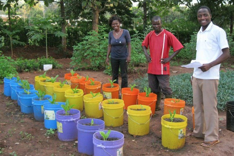 Janet Fares Maro and Aurelian Chuma from Sustainable Agriculture Tanzania (SAT) together with Rashid Mdoka who is doing his research on teas in the SAT demonstration garden at Tushikamane Centre.