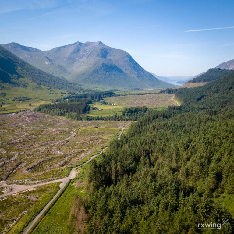 Clear Felling, Glen Etive